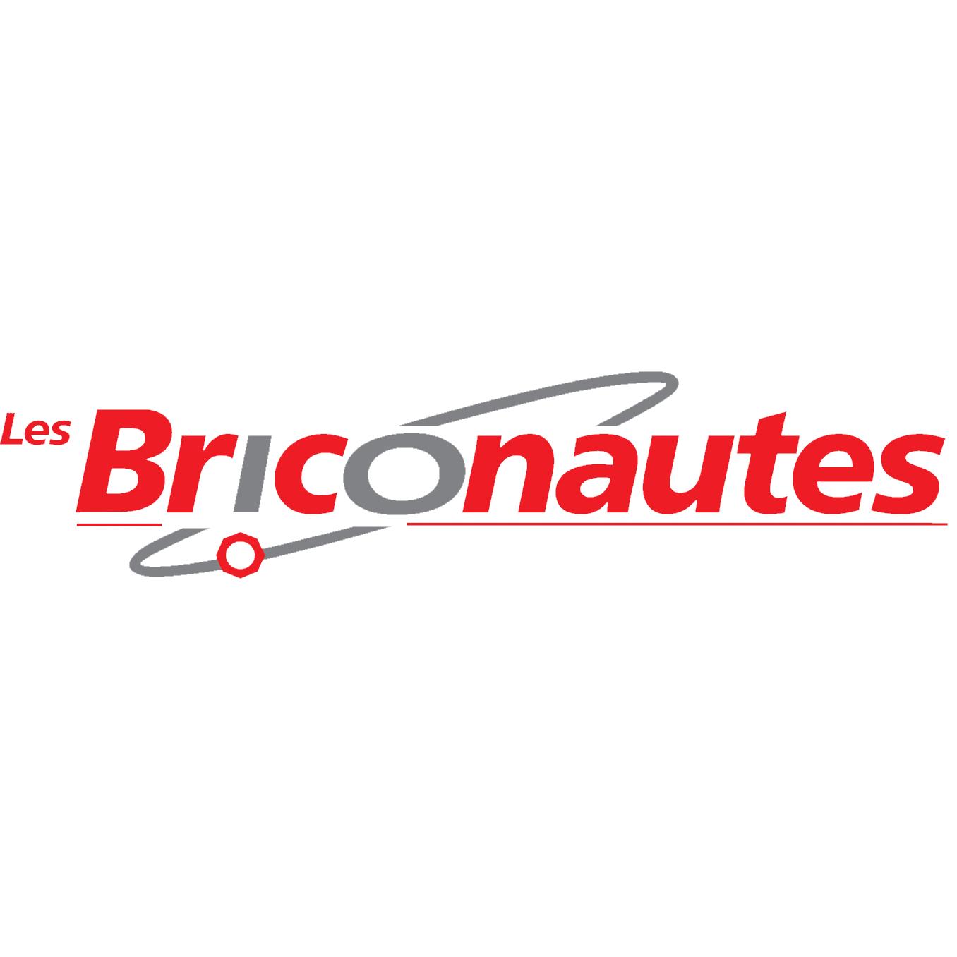 briconautes logo